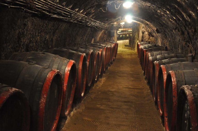Winne piwnice Tokaju. Węgry.